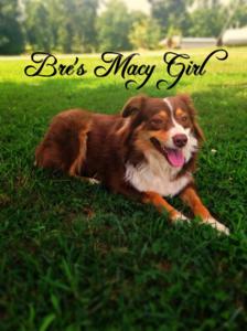 BRE'S MACY GIRL (MACY)